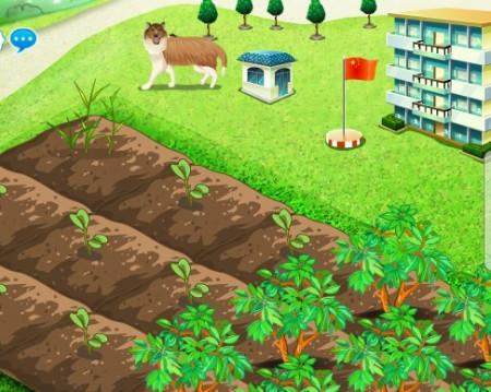 qq农场里的水仙花_qq开心农场学校背景?