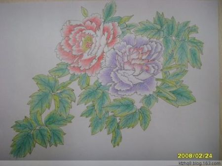 铅笔画 画法大全 荷花画法素描铅笔画 梅花画法铅笔画