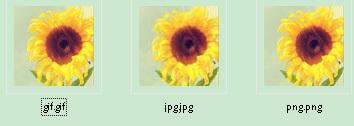 文件格式gif,jpg,jpeg图片