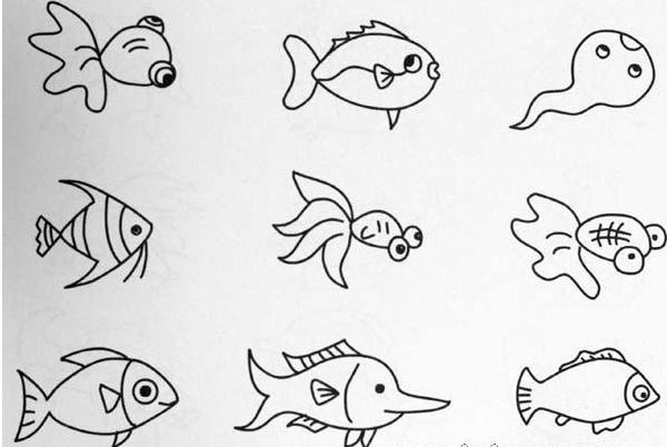 描述:漂亮的小金鱼简笔画的画法 创意DIY儿童简笔画幼儿园简笔画绘