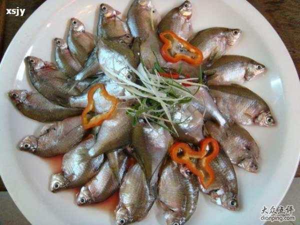 这是什么鱼