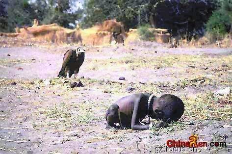 谁能帮我找图片,一个非洲儿童快饿死了.一边的老鹰