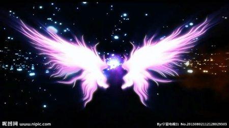 女主有翅膀的小说