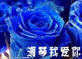 蓝色妖姬烟