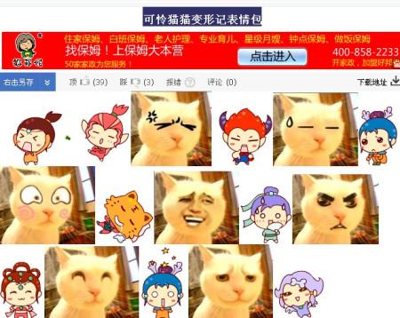 可怜猫猫变形记表情包图片图片