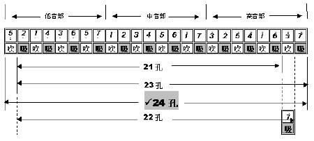 复音口琴24孔音阶分享展示